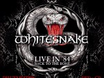 Whitesnake - Live In '84 - Back To The Bone